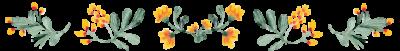 fiori-lcdppantelleria